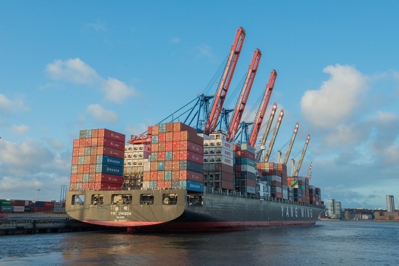 Експорт зерна з України склав 41,2 млн