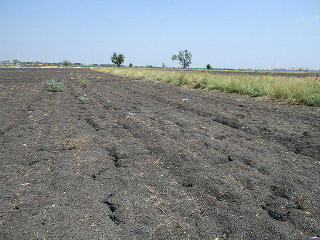 Мнение экспертов об открытии рынка земли в Украине