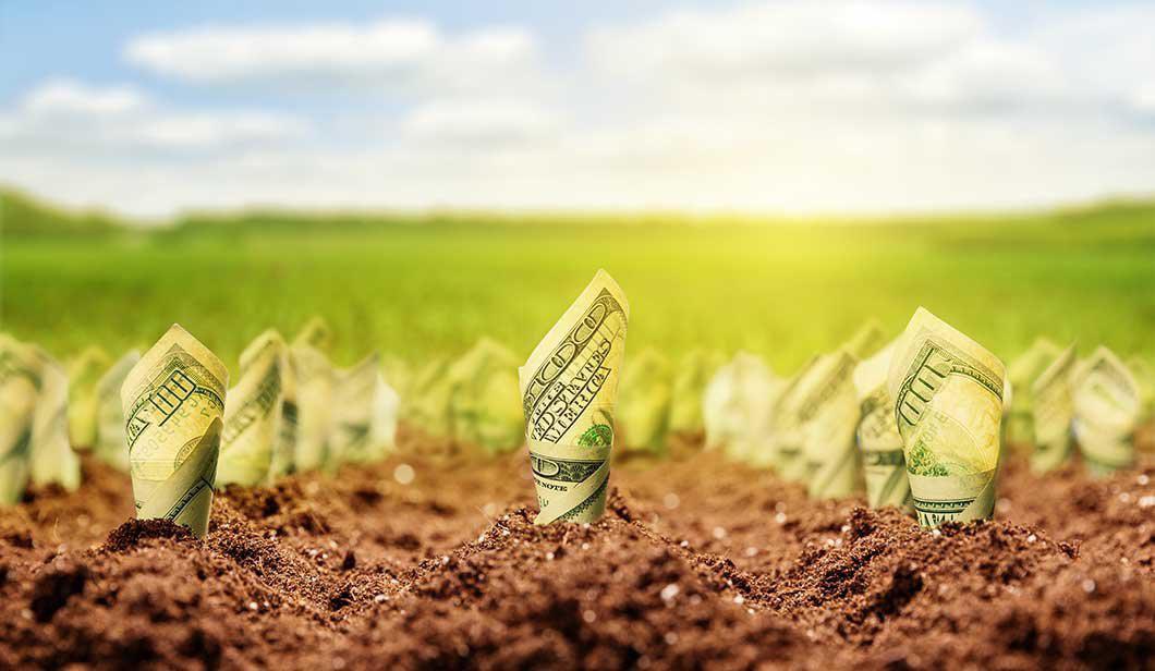 Орендна плата за сільгоспземлю в Україні майже досягла рівня країн ЄС