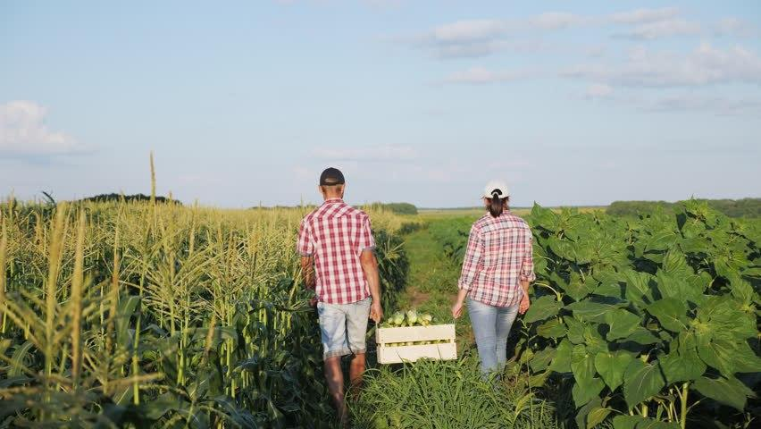 Упрощена процедура легализации семейных фермерских хозяйств