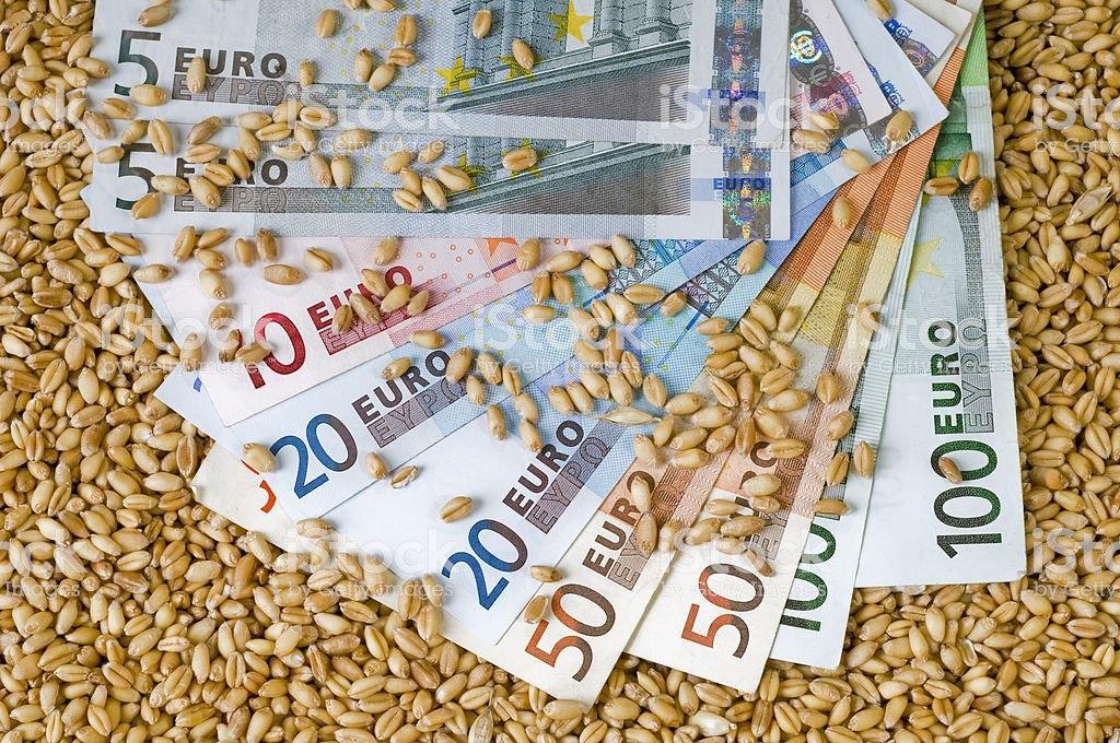 На мировых рынках наблюдается падение цен на пшеницу