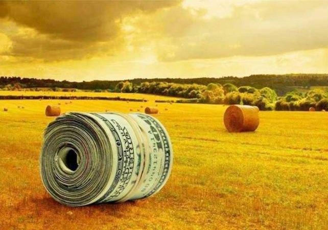 Після змін в бюджеті Кабмін зберіг держпідтримку аграріїв